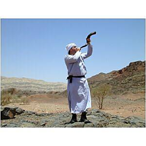 Timna priest blowing shofar, tb n052201_t